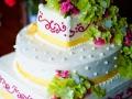 hummingbird-house-wedding-38