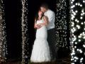 hummingbird-house-wedding-42