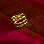 indian_wedding_austin-7